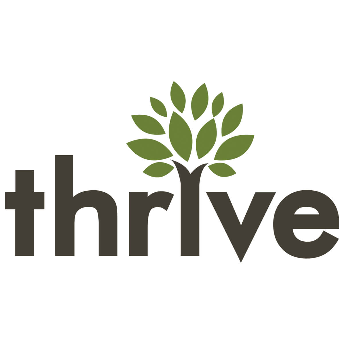 Thrive Internet Marketing Agency
