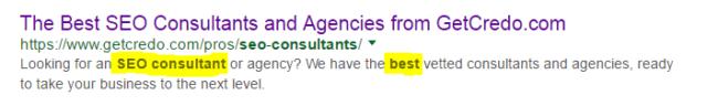 best-seo-consultants-serp