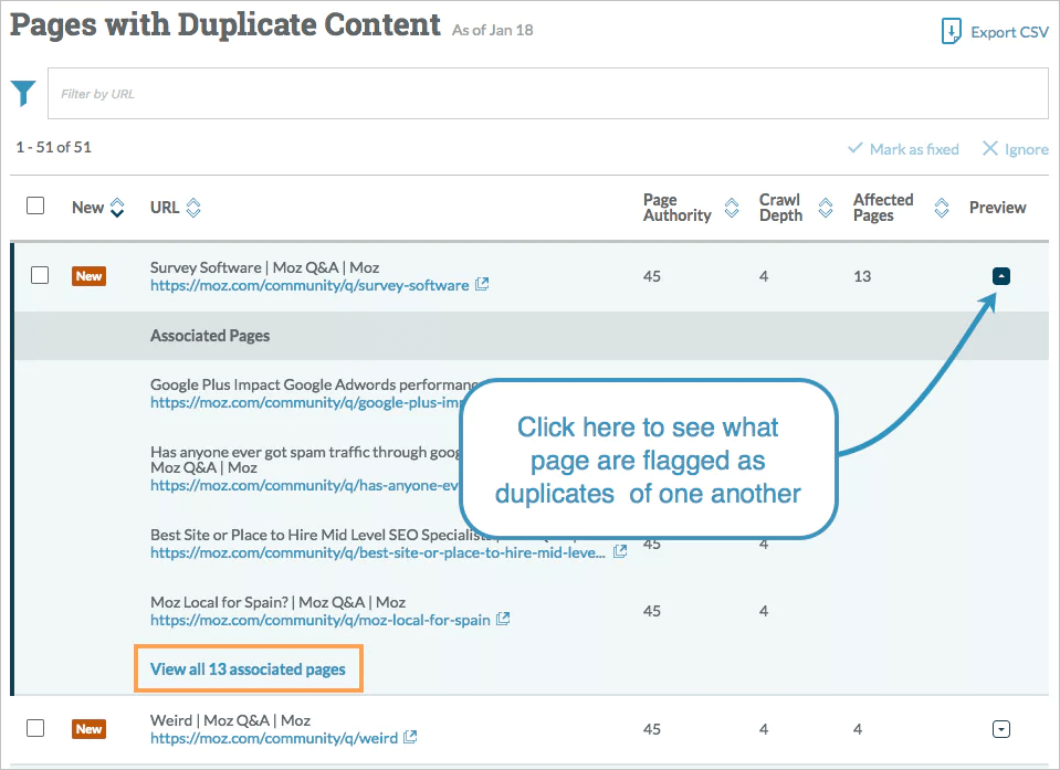 duplicate content check