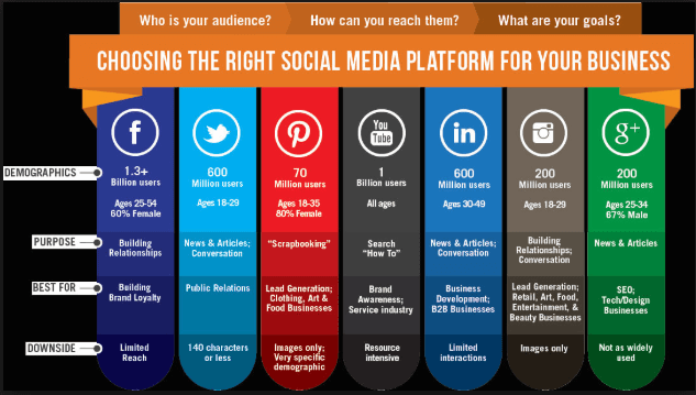 choose right social media platform for your business